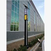 石家庄天光灯具3.5米景观灯