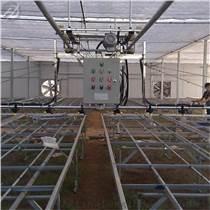 供應草莓立體種植槽 生態式種植架