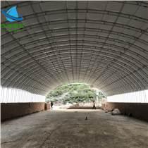 自動化養豬大棚 豬場建設 保溫大棚