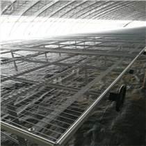 手搖式移動苗床特點 鋼板網苗床灌溉流程