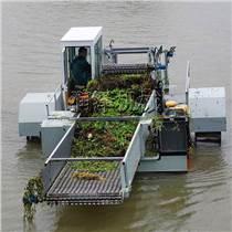 福建水葫蘆收割打撈船 水面漂浮我打撈保潔船 漂浮樹枝