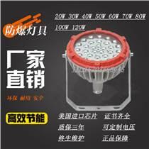 2021款防爆灯BZD180-102系列防爆免维护L