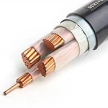 低壓電纜-上上電纜