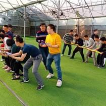 深圳公司趣味團建拓展野炊燒烤活動基地