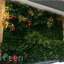河南郑州室内外植物墙公司