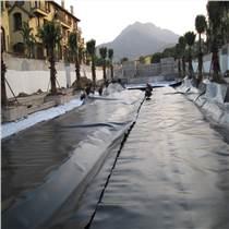 供應聚乙烯土工膜 6米寬防滲膜 屋頂綠化隔根層