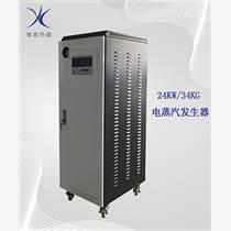 燙臺供汽24KW全自動電蒸汽發生器