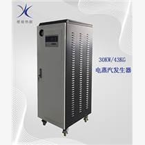蒸餾罐供汽30KW電蒸汽發生器