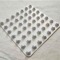 寧波水運工程塑料排水板 建筑工程塑料排水板