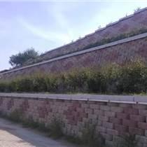 干壘擋土墻砌塊/自嵌式擋土墻砌塊/生態擋土墻砌塊/河