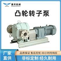 廠家供應120S電動轉子泵排污泵