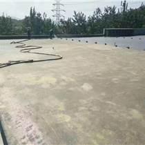 修繕未來DPS混凝土防水防腐涂料噴涂施工