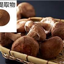 香菇提取物 香菇水溶粉 水溶香菇提取物 香菇濃縮粉