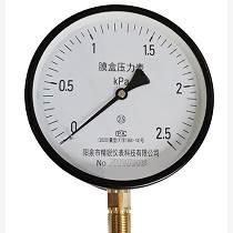 廠家直銷YE-100精密耐震壓力表2.5級