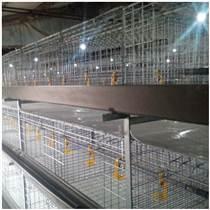 養雞場養雞用肉雞籠立式雞籠層疊雞籠雞籠廠家山東金石農