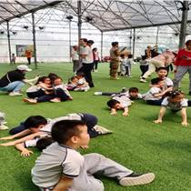 深圳南山周邊班級春秋游親子研學旅行農家樂