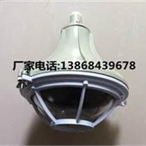 BAD-DIP-L150gZ粉塵防爆燈