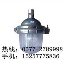 NFC9112防眩泛光燈