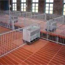 三元畜牧養豬設備保育床