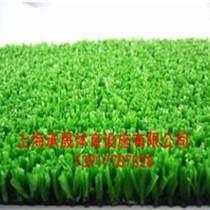 淮安人造草坪施工材料