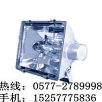 海洋王NTC9251高效投光燈