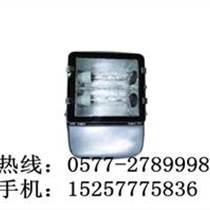 海洋王NFC9131泛光燈