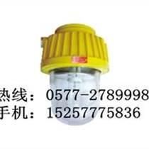 海洋王BPC8730價格-防爆平臺燈