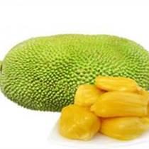 泰國進口菠蘿蜜深圳報關代理