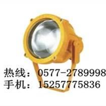 海洋王BTC8200防爆投光燈
