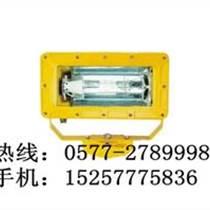 碼頭防爆泛光燈-海洋王BFC8100