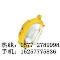 化工廠150W防爆燈-海洋王BFC8120