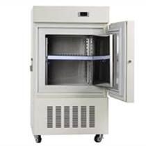 工業低溫冰箱RBL-86-158-LA