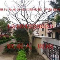 蘇州庭院景觀設計、綠化景觀工程