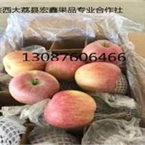 陕西红富士苹果70以上的价格