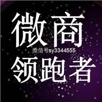 思埠彩妝總代理授權微商ws0390