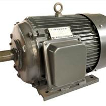 供應黃河牌Y200L1-6  18.5kW 電機 國標電機全銅線包