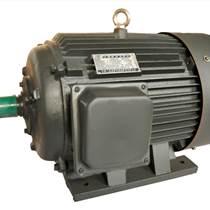 黃河牌Y315L2-6 電機 132KW6極電機 國標全銅線 匯凱機電