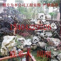 造型紅花檵木樁、紅花檵木樹樁盆景、蘇州庭院綠化苗木