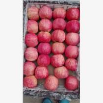 海吉星水果批发市场代卖