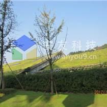 屋顶绿化为海绵城市助力