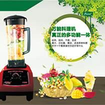 卓亚热销破壁料理机 营养豆浆机 果蔬营业萃取机