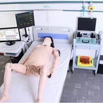 高智能數字化婦產科技能訓練系統(計算機控制)