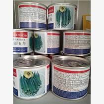 愛麗五角黃秋葵種子極耐寒品種