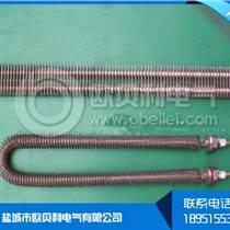 供應不銹鋼雙圓電熱管