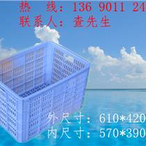 佛山喬豐江西塑料蔬菜藍子價格供應廠家直銷
