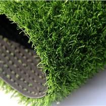 仿真草坪/人造草坪/塑料草坪/裝飾草坪