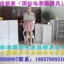 开塑料模具PC注射电表箱模具,ABS注射电表箱模具,透明PC电表箱模具生产