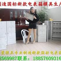 塑膠模具廠8表電表箱塑料模具,注塑電表箱外殼模具,三相注射電表箱塑膠模具生產
