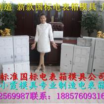 注塑模具廠13表電表箱模具,PC塑料電表箱模具,雙相注射電表箱模具報價