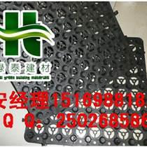 徐州屋顶绿化排水板¥南京车库滤水板